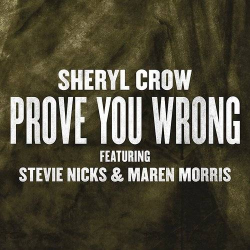 Prove You Wrong - Single