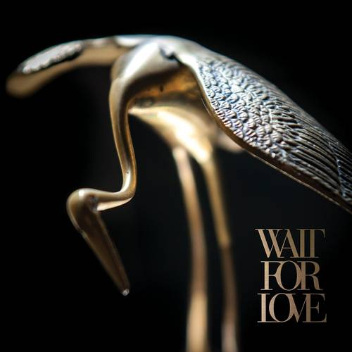 Wait For Love [LP]