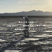 Spiritualized - And Nothing Hurt [LP]