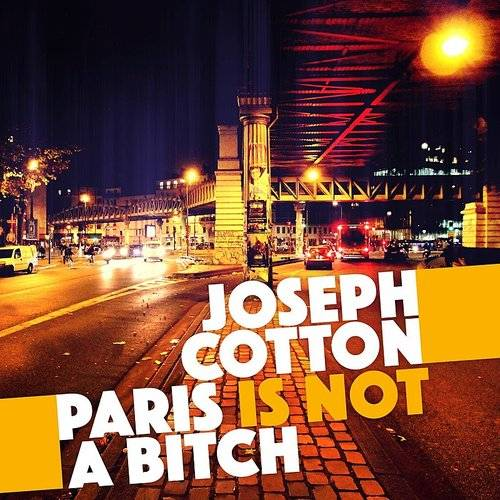 Paris Is Not A Bitch