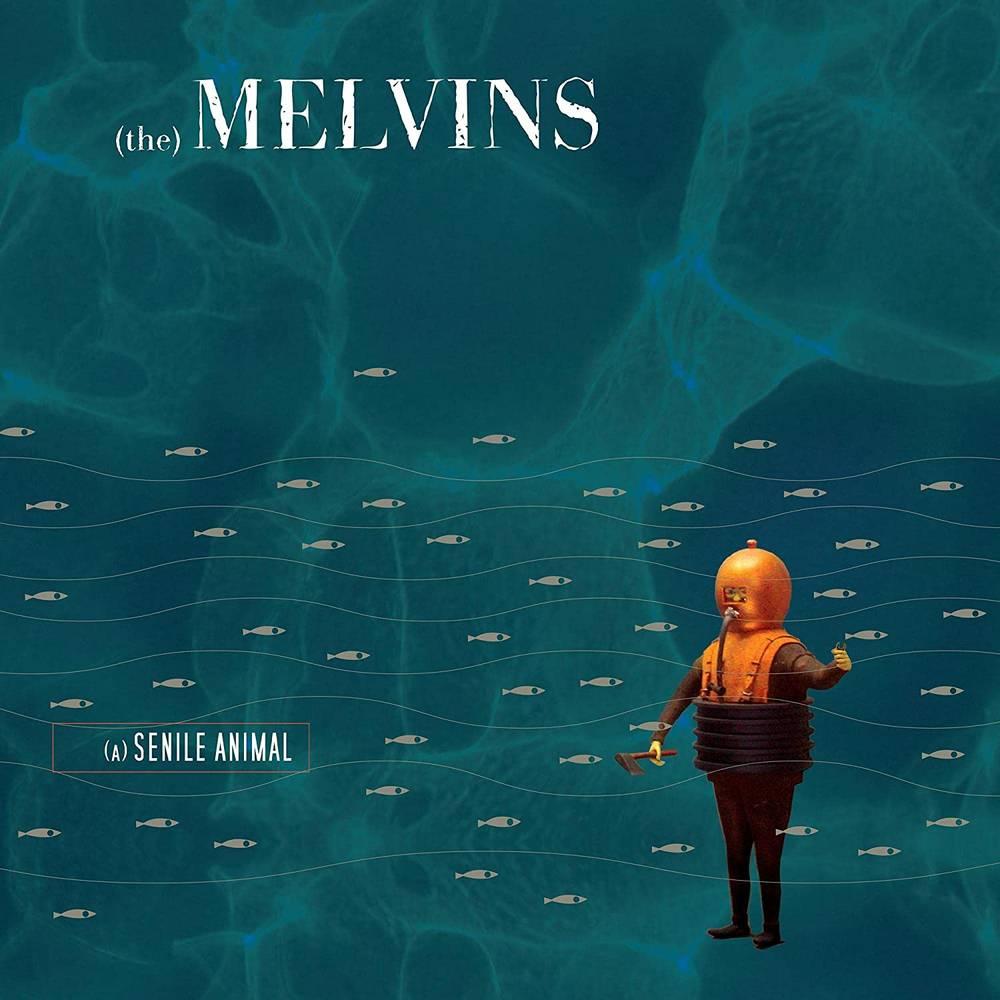 Melvins - (A) Senile Animal [Blue LP]