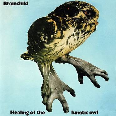 Healing Of The Lunatic Owl (W/Cd) (2pk)