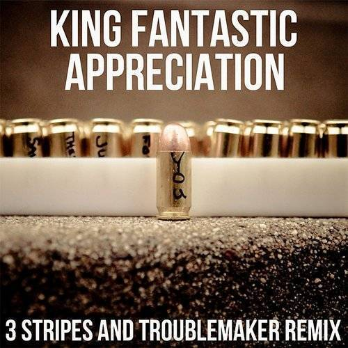 Appreciation (3 Stripes And Troublemaker Remix)