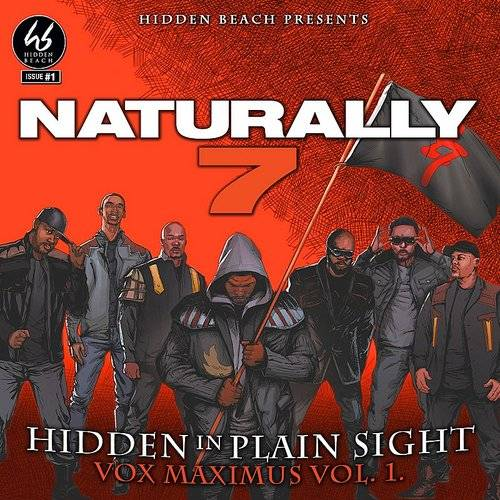 Hidden In Plain Sight (Vox Maximus Vol. 1)