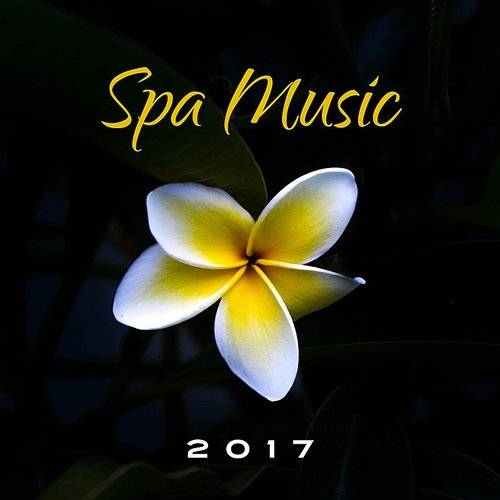 Relaxing Spa Music - Spa Music 2017 - Nature Sounds