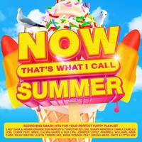 Now That's What I Call Music! - Now That's What I Call Summer [Import]