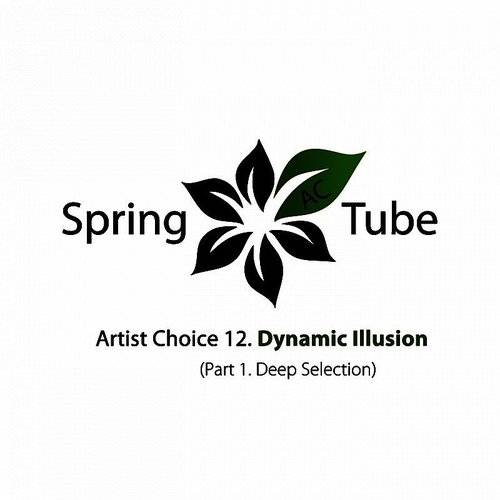 Artist Choice 012. Dynamic Illusion, Pt. 1 (Deep Selection)