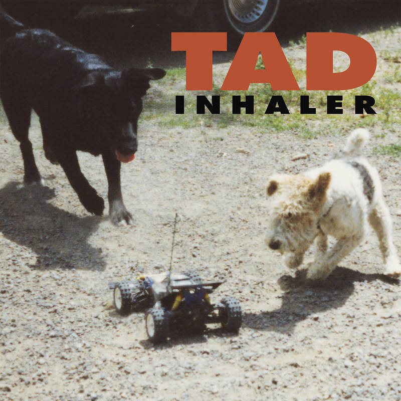 "RSD 2021, i TAD ristampano ""Inhaler"" 2 - fanzine"