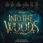 - Into The Woods / O.S.T.