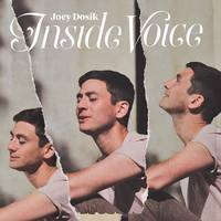 Joey Dosik - Inside Voice [Stone White LP]