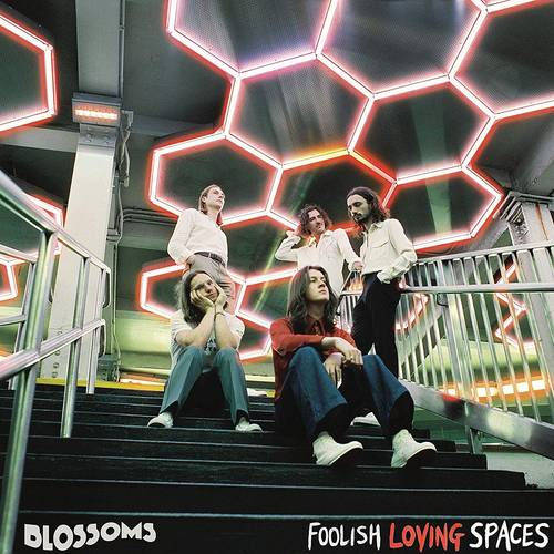 Foolish Loving Spaces [Import LP]