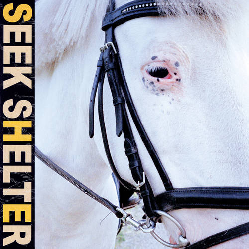 Iceage - Seek Shelter [Indie Exclusive Limited Edition Orange LP]