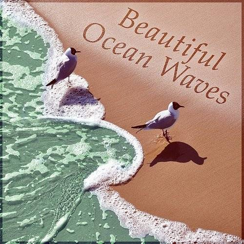Peaceful Sleep Music Collection - Beautiful Ocean Waves - Nature