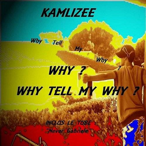 Why Tell My Why ?