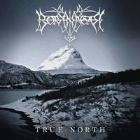 Borknagar - True North [Indie Exclusive Limited Edition Metallic Silver 2LP]