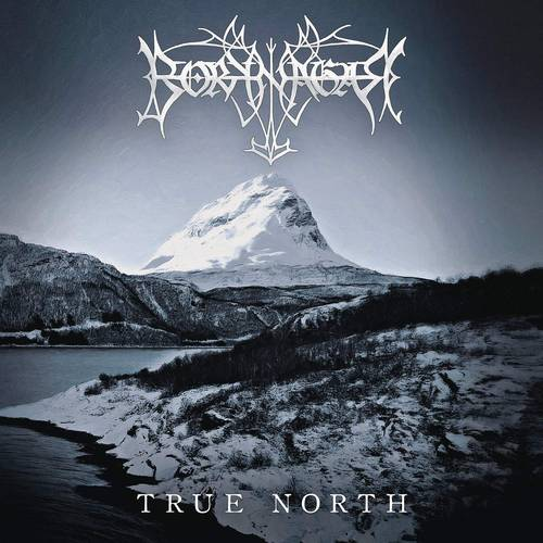 True North [Import Limited Edition LP]