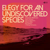 Johannes Wallmann - Elegy for an Undiscovered Species