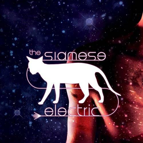 The Siamese Electric