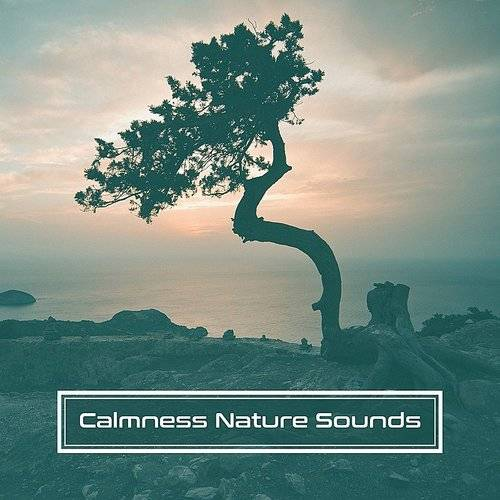 Nature and Rain - Calmness Nature Sounds - Music To Relax