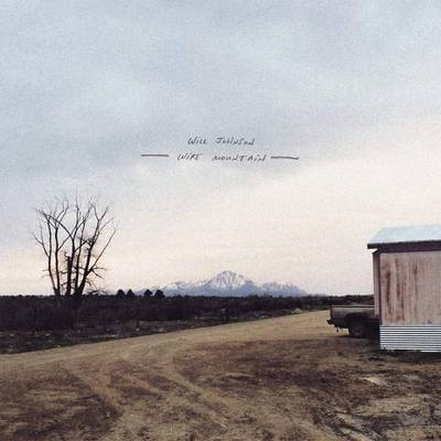Will Johnson - Wire Mountain [LP]