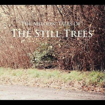 The Melodic Tales Of The Still Trees