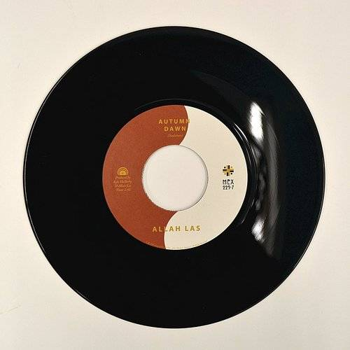 Autumn Dawn b/w Hereafter [Vinyl Single]
