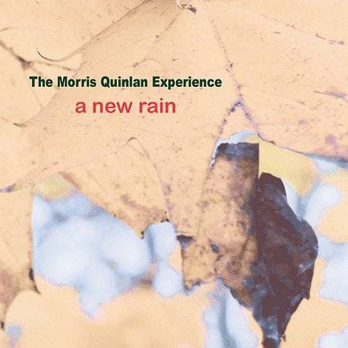 A New Rain/Free Party