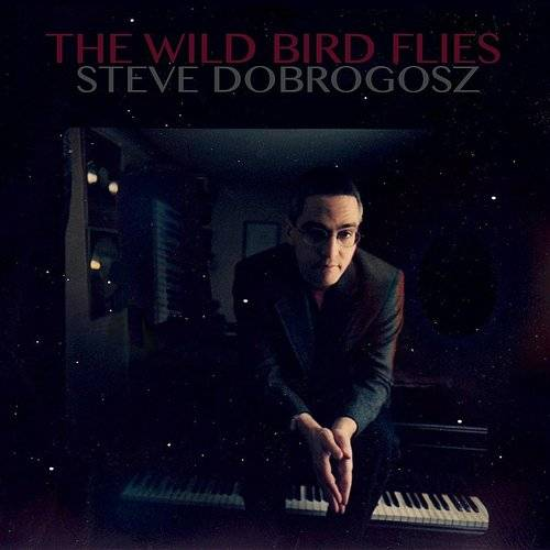 The Wild Bird Flies