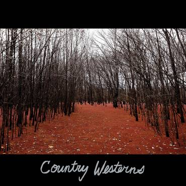 Country Westerns [LP]
