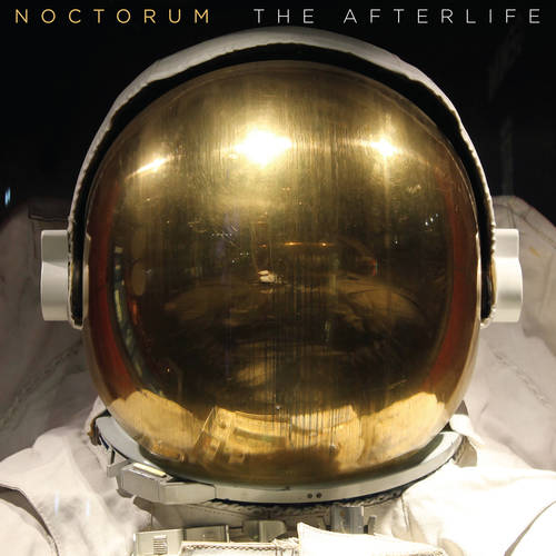 The Afterlife (LP)
