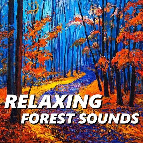 Relaxing Forest Sounds - Relaxing Forest Sounds | Down In The Valley