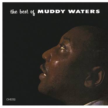 Best Of Muddy Waters