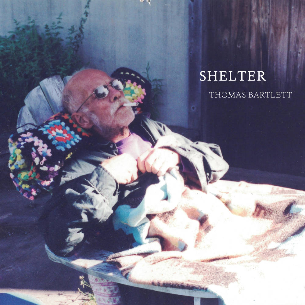 Thomas Bartlett - Shelter [LP]
