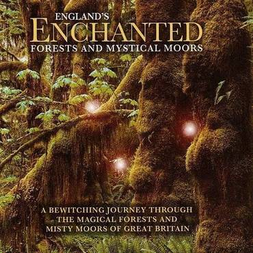 England's Enchanted Forests & Mystical Moors