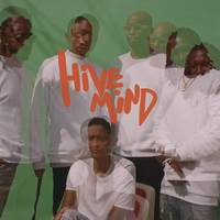 The Internet - Hive Mind [LP]