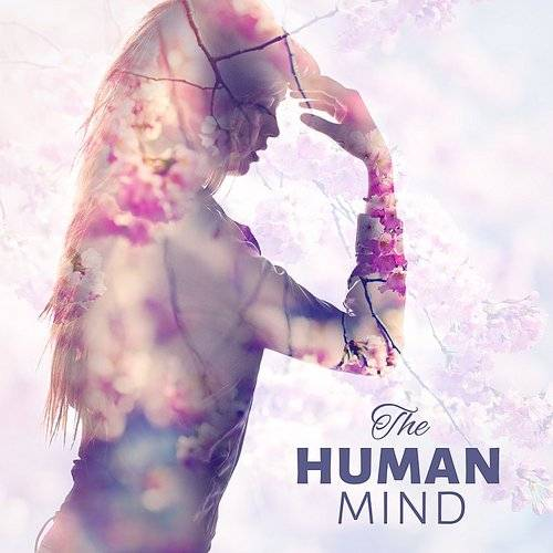 Mind and Body Sanctuary - The Human Mind - Concentration, Calm