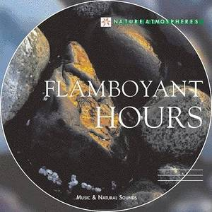 Nature Atmosphere: Flamboyant Hours