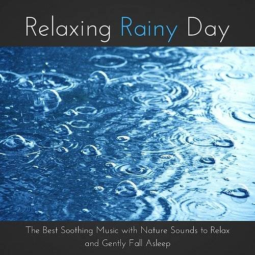 Ambience Sounds of Nature Specialists - Relaxing Rainy Day - The