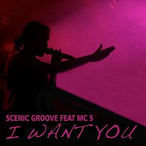 I Want You (Feat. Mc S)