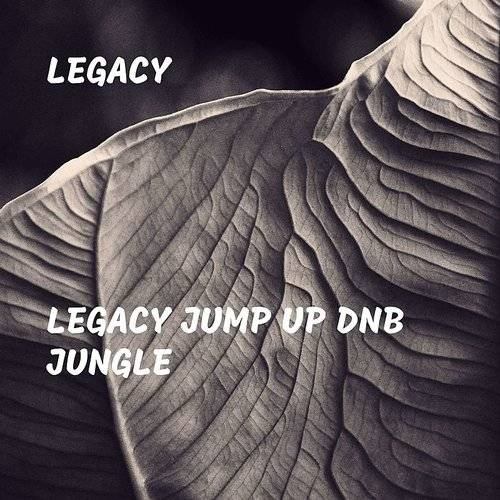 Legacy Jump Up Dnb Jungle - EP