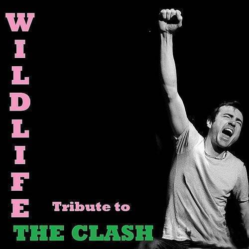 Tribute To The Clash