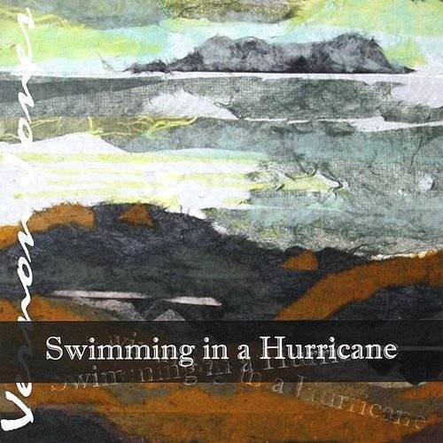 Swimming In A Hurricane