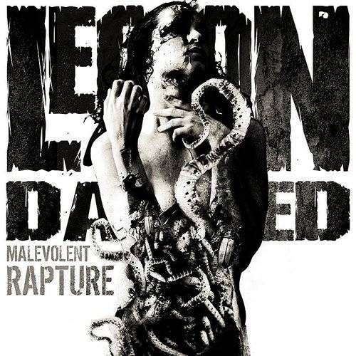 Malevolent Rapture-In Memory Of [Import]