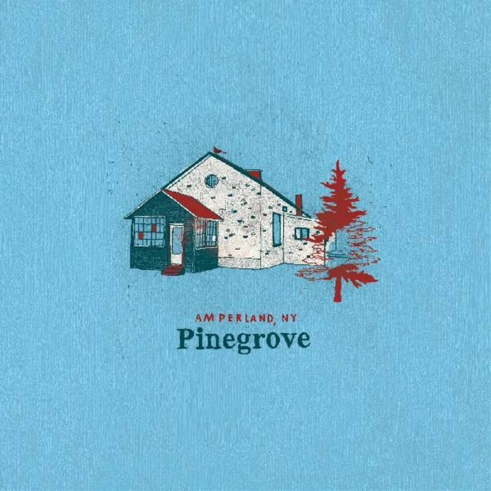 Pinegrove - Amperland, NY [2LP]