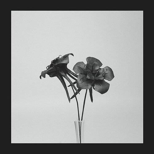 Dark Lotus [Vinyl Single]