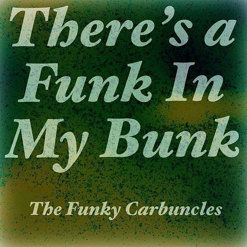 There's A Funk In My Bunk - Single