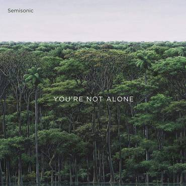 You're Not Alone EP [Vinyl]