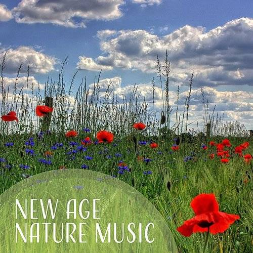 Positive Energy Academy - New Age Nature Music - Calming Sounds