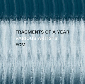 Fragments of a Year