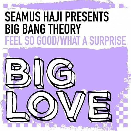 Seamus Haji Presents Big Bang Theory: Feel So Good / What A Surprise